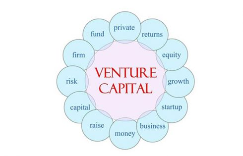 Making Venture Capital Loans - Important Things That You Should Know