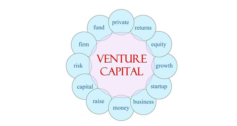 Making Venture Capital Loans – Important Things That You Should Know